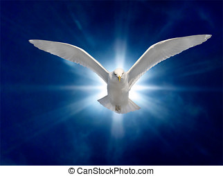 Holy Spirit 2 - Holy Spirit Bird on Royal Blue Starburst...