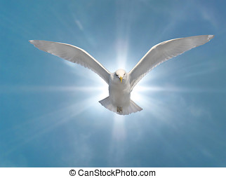Holy Spirit Bird with Glowing Sun Background