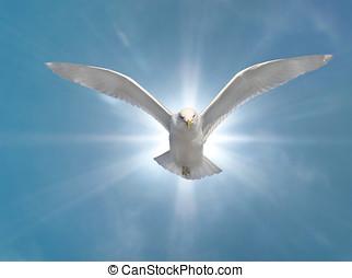 santo, espíritu