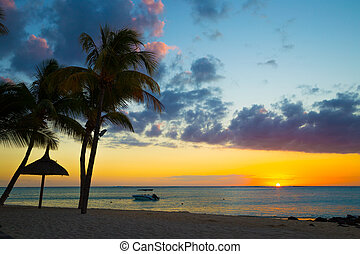 Beach with black stones, boat and palm trees at sunset on...