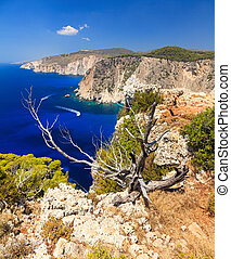 Cape Keri tree - Beautiful view on top of the cliffs at Cape...