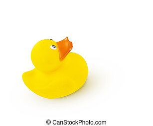 Yellow Rubber Duck isolated on white background
