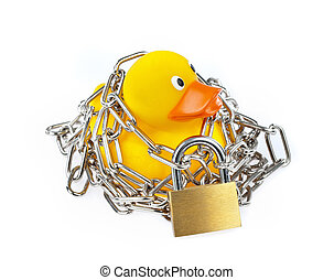 Yellow Rubber Duck with chain and padlock on white...