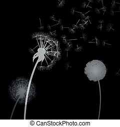 Vector Dandelion - Vector Illustration of Dandelion