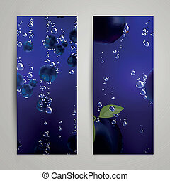 Vector Fruit Banners - Vector Illustration of Fruit Banners