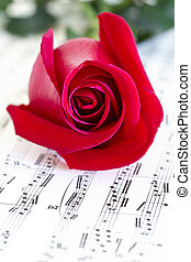 Musical rose and red rose - Vintage sheet music with red...