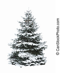 Christmas tree - Christmas Tree - Isolated over White...