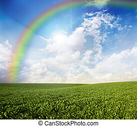 landscape - Green meadow under blue sky with a rainbow
