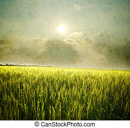 Grunge landscape - Grunge image of field and sky.