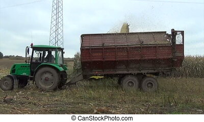 maize cut tractor trailer - Seasonal farm works maize field...