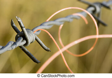 Barb Wire with an orange plastic thread entangled in it.