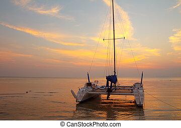 catamaran, tropicais, praia, pôr do sol