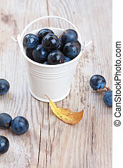 Blackthorn berry sloe in a bucket on wooden table
