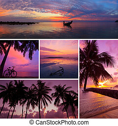 Beautiful collage of tropical sunset images, beach, palm trees at twilight