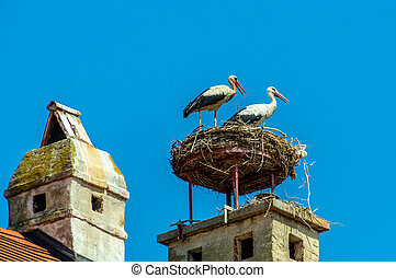 austria, rust nest of a stork - a storks nest on a...