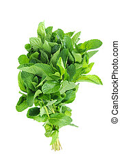 spearmint - a bunch spearmint on isolated white background