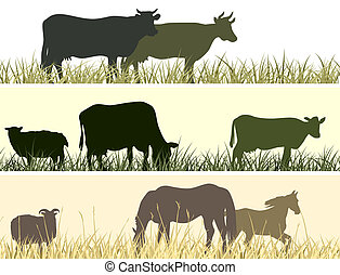 Banner of farm pets. - Horizontal vector banner: silhouettes...