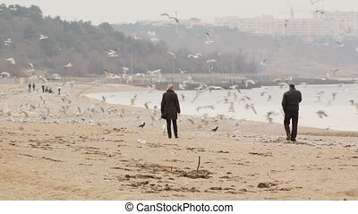 Couple with dog strolling along the beach - Adult couple...