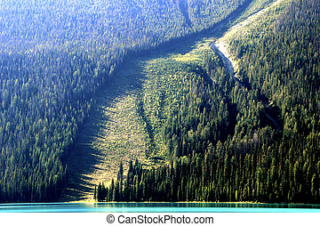 Avalanche path at Emerald Lake, Yoho National Park, Canada -...