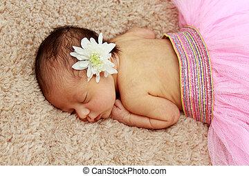 recién nacido, retrato, bebé, sueño