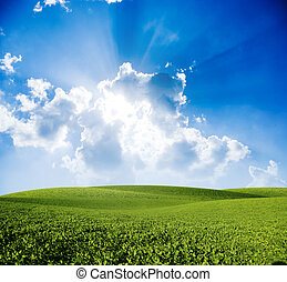 landscape - Green meadow under blue sky with clouds