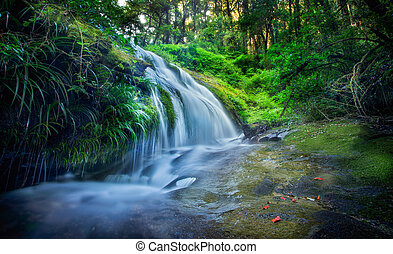 Kew Mae Pan, Waterfall in hill evergreen forest of Doi...