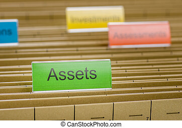 Hanging file folder labeled with Assets