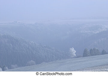 frozen slope and mist - view into valley of frozen forest...