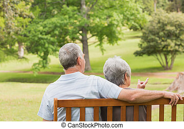 Rear view of senior couple sitting on bench at park - Rear...