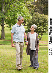 Happy senior couple holding hands and walking in park - Full...