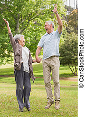 Active senior couple holding hands and jumping in park -...