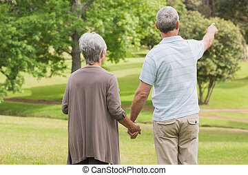 Rear view of a senior couple holding hands at park - Rear...