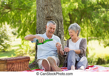 Cheerful senior couple having champagne at park - Cheerful...