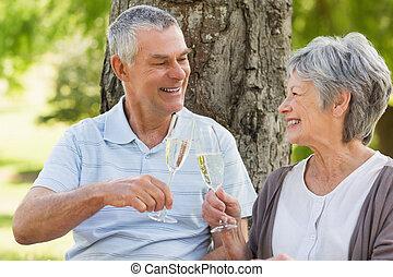 Happy senior couple toasting champa - Happy senior man and...