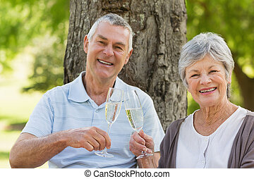 Portrait of happy senior couple toasting champagne at park