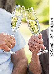 Hands toasting champagne flutes at park - Close-up of hands...