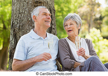 Happy senior couple with champagne at park