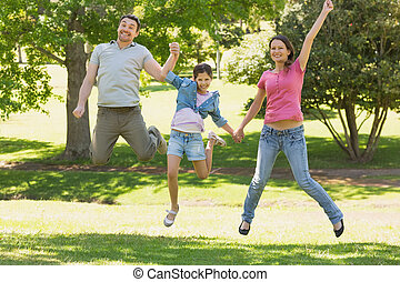 Family of three holding hands and jumping at park