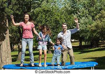 familia, trampolín, parque, alto, Saltar, feliz