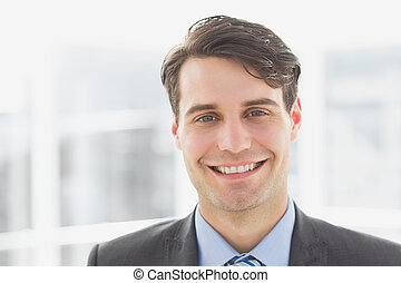 Smiling handsome businessman in the office