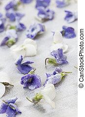 confit, violettes