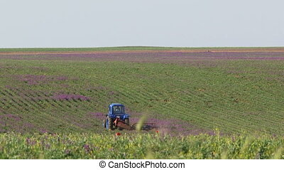 Tractor working in a field on a sunny day