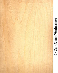 Natural birch wood texture, veneer
