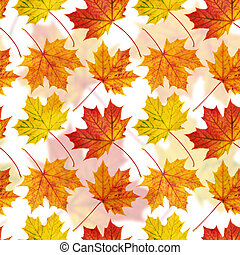 Maple-leaf seamless background - Autumn colorful maple-leaf...