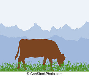 Cow in the alpine meadow