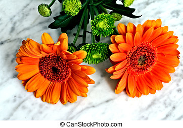 Two gerbera with greenery on a marble table.