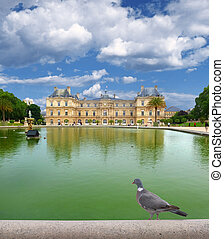 Palais - Dove.Palais du Luxembourg, Paris, France