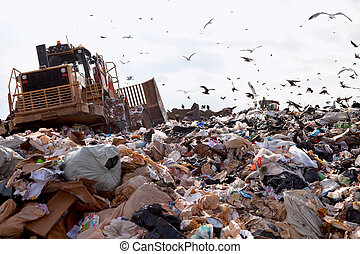 Landfill truck in trash