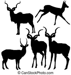 Antelope Silhouettes - Black Illustration, Vector