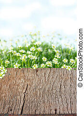Easter background. - Empty old wooden table on sprind field....